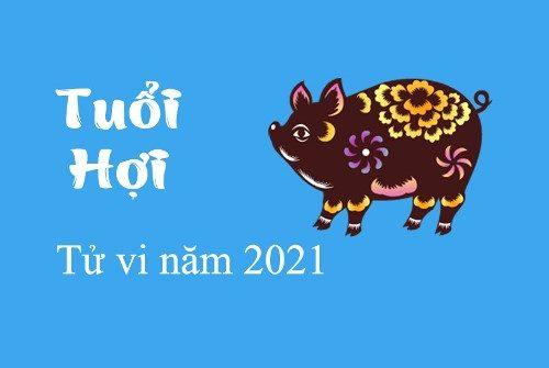 tử vi tuổi hợi năm 2021
